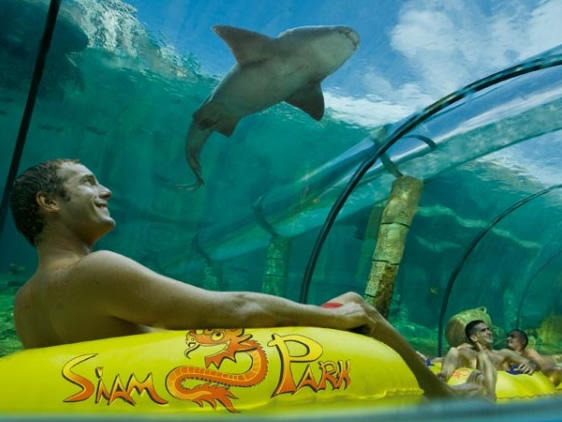 SIAM PARK Entry Tickets -